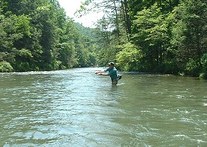 Virginia fly fishing trips shenandoah valley fly fishing for Iowa fishing license cost